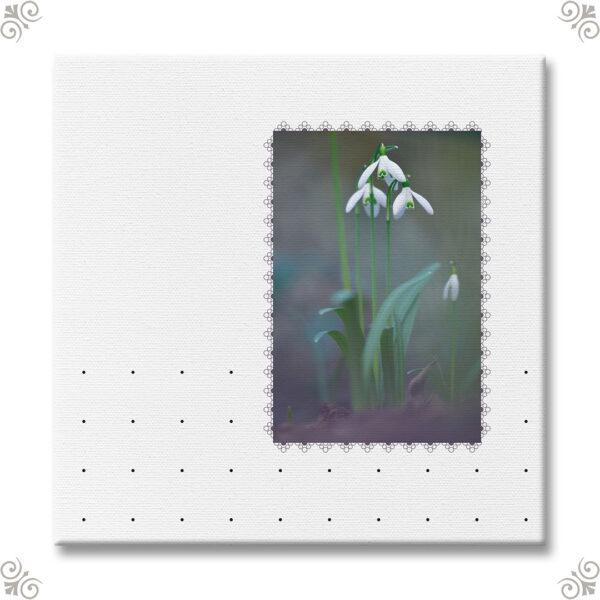 Vorbote des Frühlings als Wandbild 1
