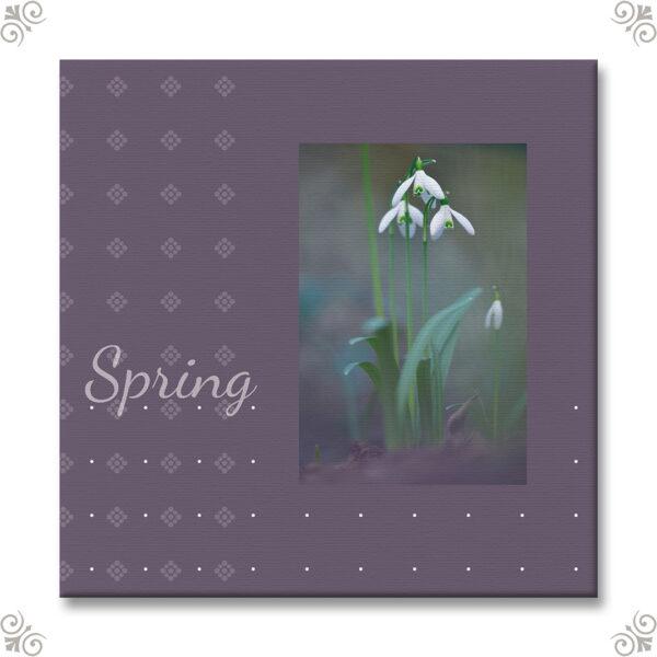Vorbote des Frühlings als Wandbild 3